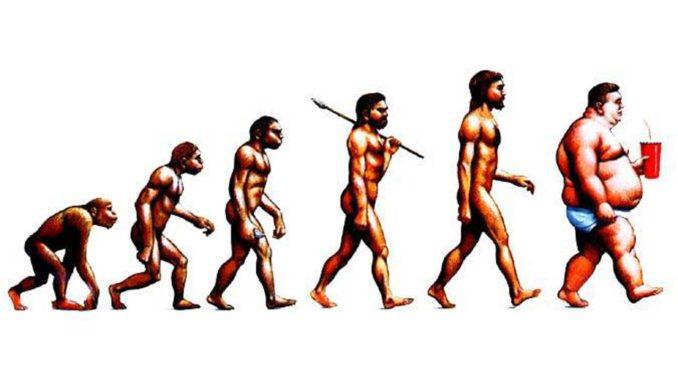 évolution de l'homme